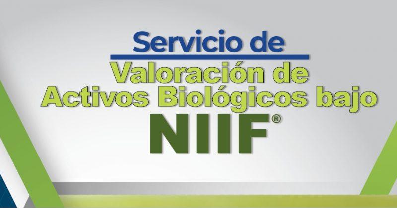 Servicio de valoración de activos biológicos bajo NIIF®